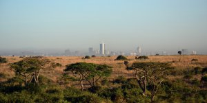 Nairobi Top 5 To Do Dollar Flight Club