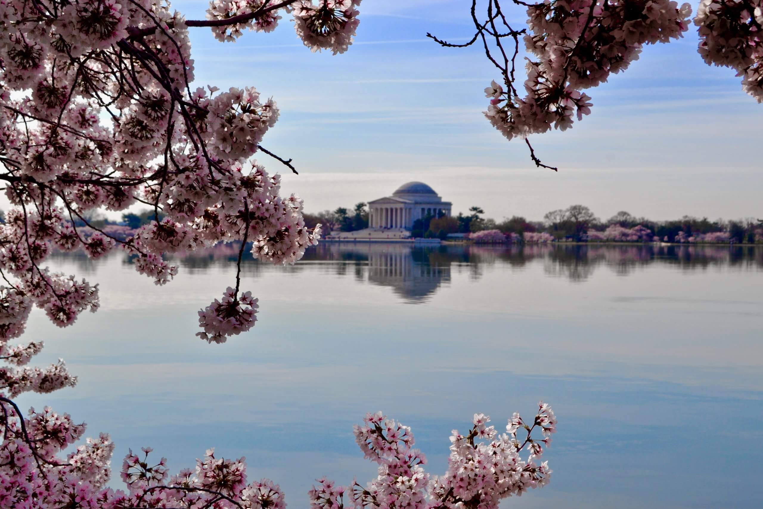 how to visit Washington DC on a budget