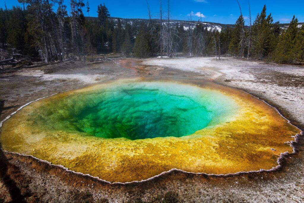 close up shot of vibrantly colorful morning glory pool in yellowstone national park