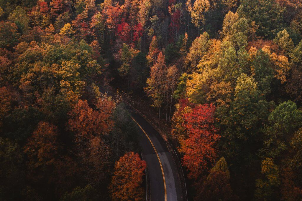 Aerial photo of a road winding through colorful autumn trees in Great Smoky Mountains National Park