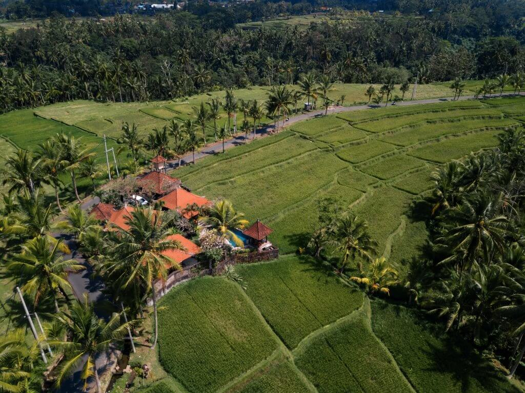 drone shot of a bali villa surrounded by rice fields