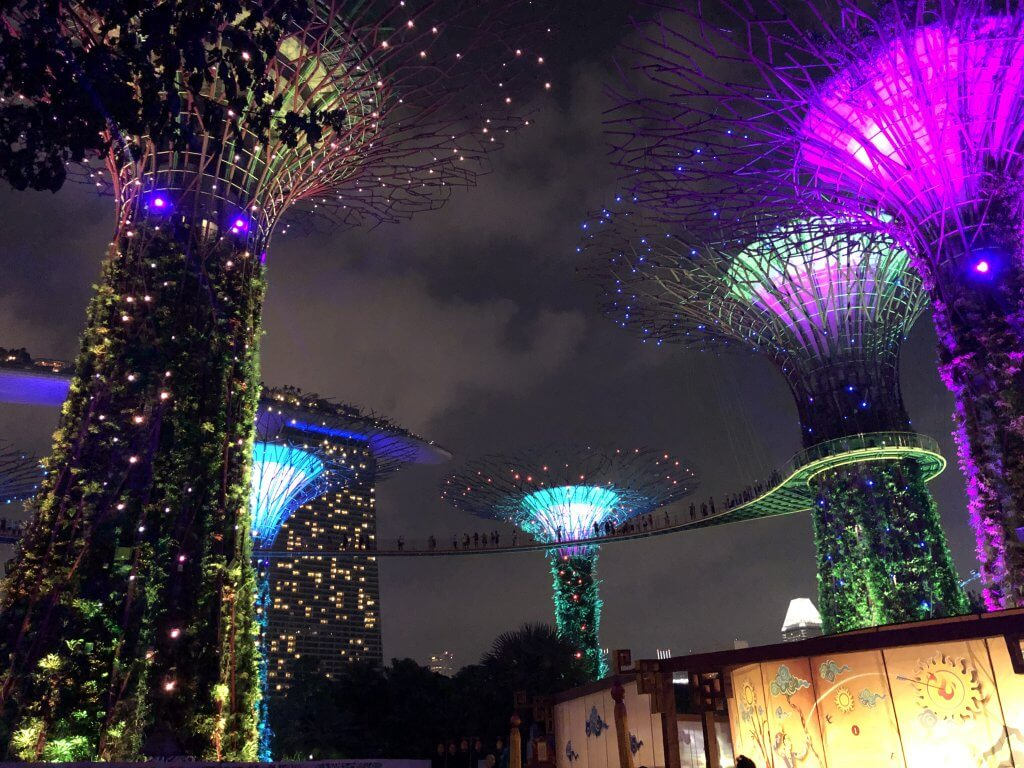 Singapore's supertrees lit up with neon lights at gardens by the bay light show