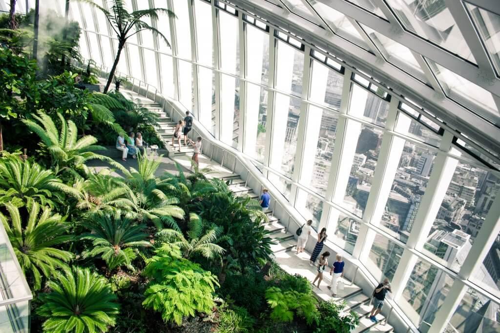 plants and windows inside London's skygarden