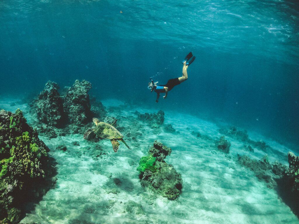 woman snorkeling with a sea turtle in Hawaii